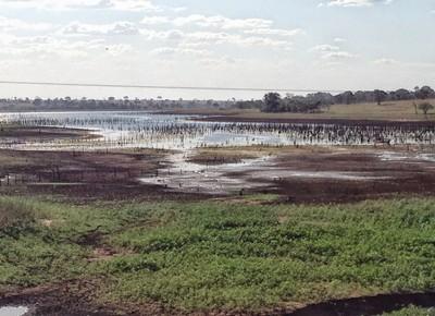 Ministério encomenda pesquisa para agricultura irrigada