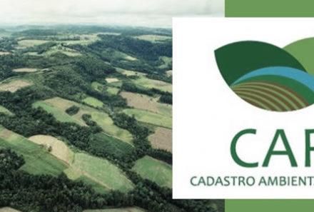 Saiba mais sobre o Cadastro Ambiental Rural