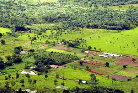 Câmara aprova prazo maior de inscrição no Cadastro Ambiental Rural