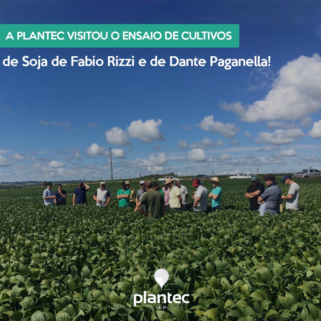 A Plantec Visitou o Ensaio de Cultivos